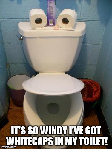 Im In Toilet