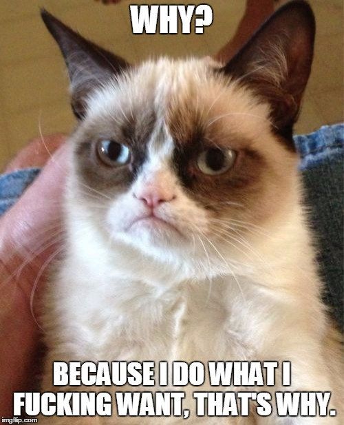 Grumpy Cat Meme | WHY? BECAUSE I DO WHAT I F**KING WANT, THAT'S WHY. | image tagged in memes,grumpy cat | made w/ Imgflip meme maker