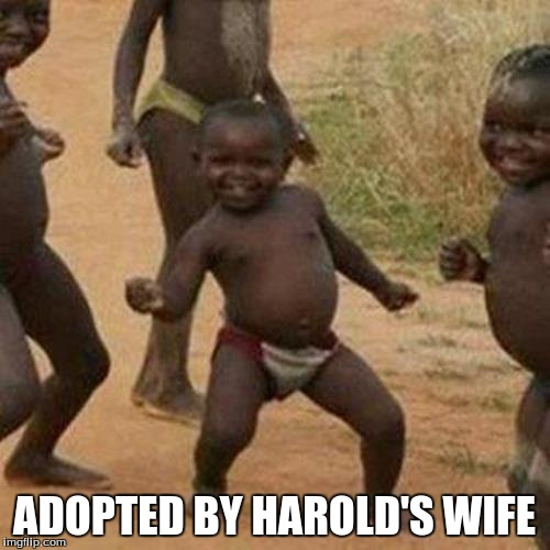Third World Success Kid Meme | ADOPTED BY HAROLD'S WIFE | image tagged in memes,third world success kid | made w/ Imgflip meme maker