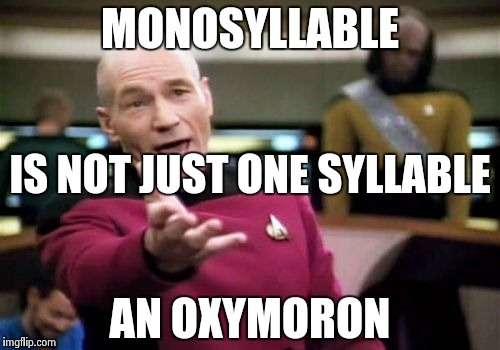 Picard Wtf Meme | MONOSYLLABLE AN OXYMORON IS NOT JUST ONE SYLLABLE | image tagged in memes,picard wtf | made w/ Imgflip meme maker