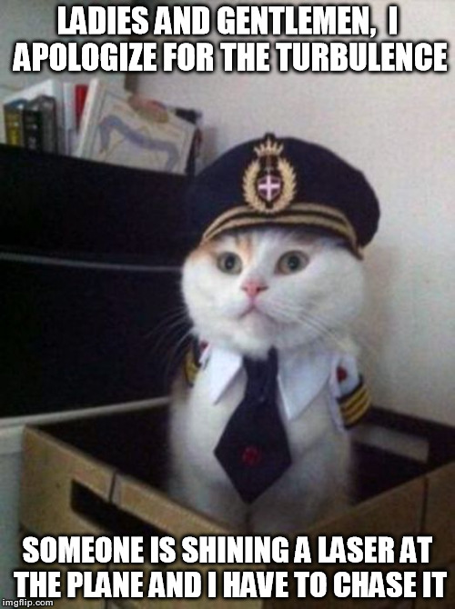 This is your captain | LADIES AND GENTLEMEN,  I APOLOGIZE FOR THE TURBULENCE SOMEONE IS SHINING A LASER AT THE PLANE AND I HAVE TO CHASE IT | image tagged in kitty,captain,airlines | made w/ Imgflip meme maker