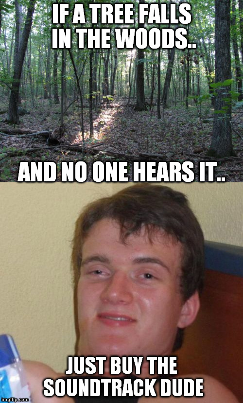 10 guy philosophy | IF A TREE FALLS IN THE WOODS.. JUST BUY THE SOUNDTRACK DUDE AND NO ONE HEARS IT.. | image tagged in 10 guy stoned | made w/ Imgflip meme maker