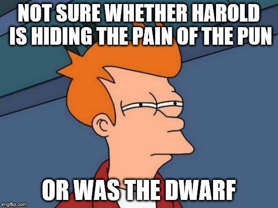 Futurama Fry Meme | NOT SURE WHETHER HAROLD IS HIDING THE PAIN OF THE PUN OR WAS THE DWARF | image tagged in memes,futurama fry | made w/ Imgflip meme maker