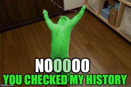 RayCat Noooooo | YOU CHECKED MY HISTORY | image tagged in raycat noooooo | made w/ Imgflip meme maker