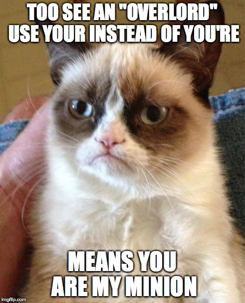 "Grumpy Cat Meme | TOO SEE AN ""OVERLORD"" USE YOUR INSTEAD OF YOU'RE MEANS YOU ARE MY MINION 