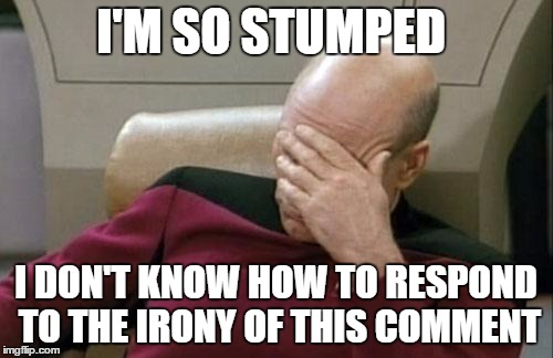 Captain Picard Facepalm Meme | I'M SO STUMPED I DON'T KNOW HOW TO RESPOND TO THE IRONY OF THIS COMMENT | image tagged in memes,captain picard facepalm | made w/ Imgflip meme maker