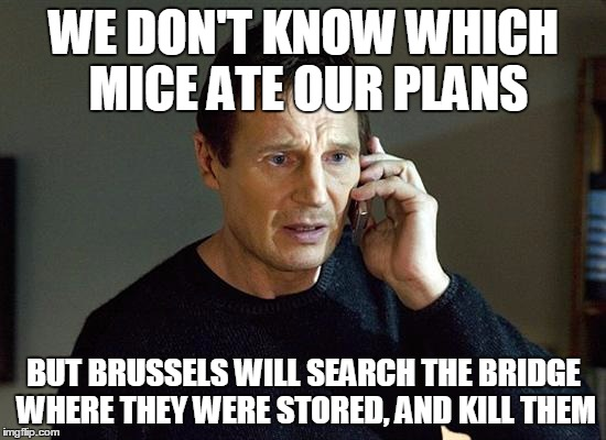 Liam Neeson Taken 2 Meme |  WE DON'T KNOW WHICH MICE ATE OUR PLANS; BUT BRUSSELS WILL SEARCH THE BRIDGE WHERE THEY WERE STORED, AND KILL THEM | image tagged in memes,liam neeson taken 2 | made w/ Imgflip meme maker