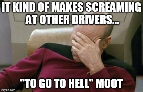 "Captain Picard Facepalm Meme | IT KIND OF MAKES SCREAMING AT OTHER DRIVERS... ""TO GO TO HELL"" MOOT 