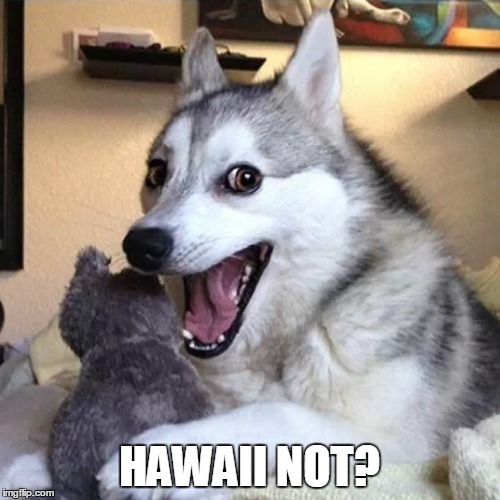 HAWAII NOT? | made w/ Imgflip meme maker