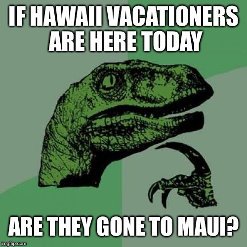 The state of American puns | IF HAWAII VACATIONERS ARE HERE TODAY ARE THEY GONE TO MAUI? | image tagged in memes,philosoraptor | made w/ Imgflip meme maker