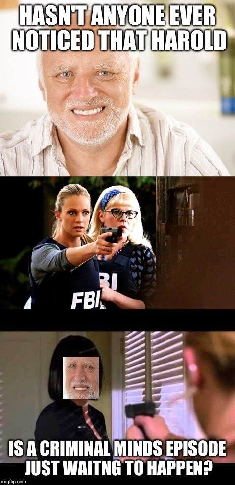 Criminal minds season finale; The Hider | HASN'T ANYONE EVER NOTICED THAT HAROLD IS A CRIMINAL MINDS EPISODE JUST WAITNG TO HAPPEN? | image tagged in criminal minds,hide the pain harold,tv show,psycho,memes,funny | made w/ Imgflip meme maker