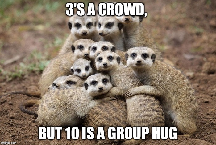 Animals Hugging | 3'S A CROWD, BUT 10 IS A GROUP HUG | image tagged in animals hugging | made w/ Imgflip meme maker