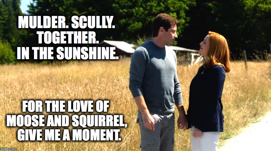 SunshineXFiles |  MULDER. SCULLY. TOGETHER. IN THE SUNSHINE. FOR THE LOVE OF MOOSE AND SQUIRREL,   GIVE ME A MOMENT. | image tagged in x-files | made w/ Imgflip meme maker