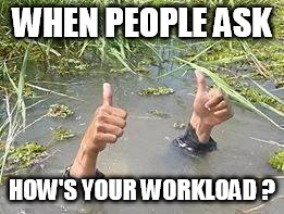 underWater | WHEN PEOPLE ASK HOW'S YOUR WORKLOAD ? | image tagged in underwater | made w/ Imgflip meme maker