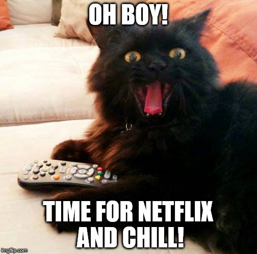 OH BOY! Cat |  OH BOY! TIME FOR NETFLIX AND CHILL! | image tagged in oh boy cat,memes,netflix and chill,tv,cat | made w/ Imgflip meme maker