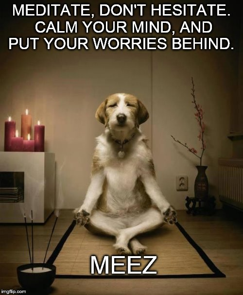 Meditation | MEDITATE, DON'T HESITATE. CALM YOUR MIND, AND PUT YOUR WORRIES BEHIND. MEEZ | image tagged in meditation | made w/ Imgflip meme maker