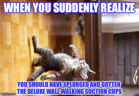 Cool Cat Stroll |  WHEN YOU SUDDENLY REALIZE; YOU SHOULD HAVE SPLURGED AND GOTTEN THE DELUXE WALL WALKING SUCTION CUPS | image tagged in memes,cool cat stroll | made w/ Imgflip meme maker
