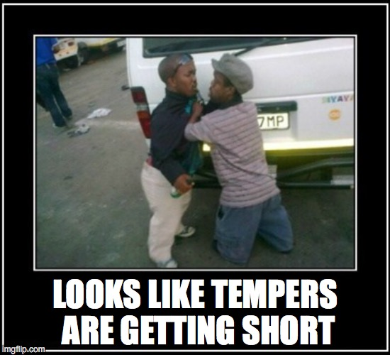And in addition to everything else... | LOOKS LIKE TEMPERS ARE GETTING SHORT | image tagged in midgets,dwarf,fight | made w/ Imgflip meme maker