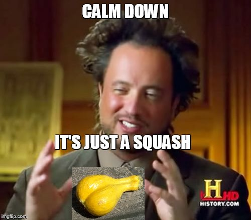 Ancient Aliens Meme | CALM DOWN IT'S JUST A SQUASH | image tagged in memes,ancient aliens,vegetables | made w/ Imgflip meme maker