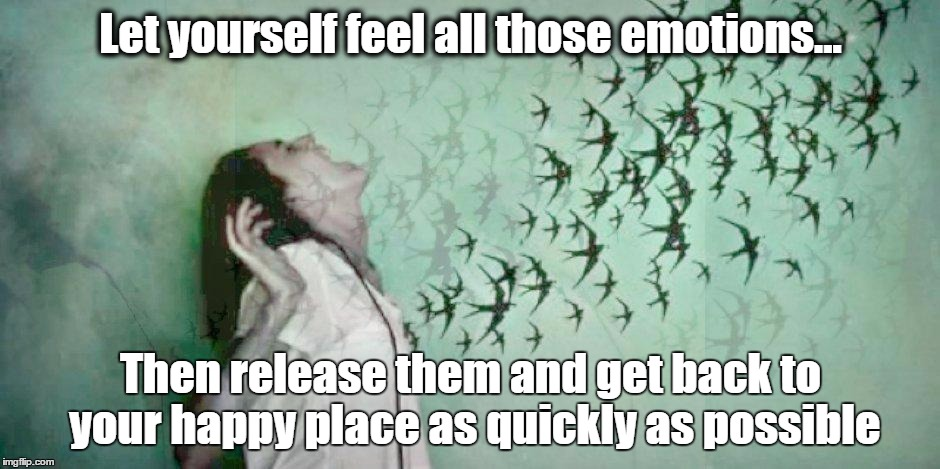 Grief meme |  Let yourself feel all those emotions... Then release them and get back to your happy place as quickly as possible | image tagged in grief meme,emotions,happyplace | made w/ Imgflip meme maker