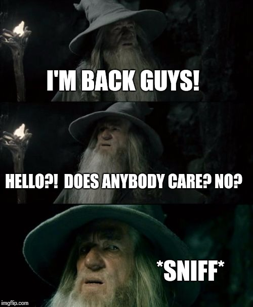Confused Me | I'M BACK GUYS! HELLO?!  DOES ANYBODY CARE? NO? *SNIFF* | image tagged in memes,confused gandalf | made w/ Imgflip meme maker