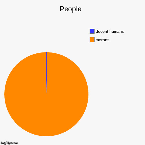 People  | morons, decent humans | image tagged in funny,pie charts | made w/ Imgflip chart maker