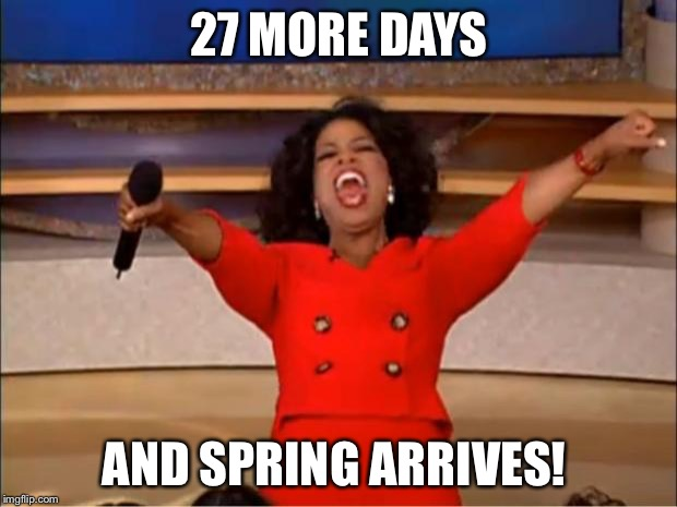 Oprah You Get A Meme |  27 MORE DAYS; AND SPRING ARRIVES! | image tagged in memes,oprah you get a | made w/ Imgflip meme maker