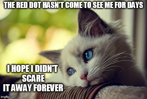 First World Problems Cat | THE RED DOT HASN'T COME TO SEE ME FOR DAYS I HOPE I DIDN'T SCARE IT AWAY FOREVER | image tagged in memes,first world problems cat,cats | made w/ Imgflip meme maker