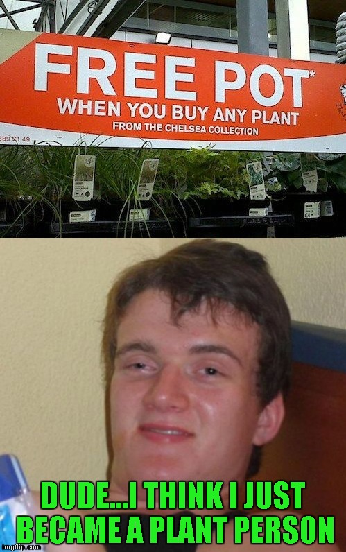 10 Guy | DUDE...I THINK I JUST BECAME A PLANT PERSON | image tagged in memes,10 guy | made w/ Imgflip meme maker