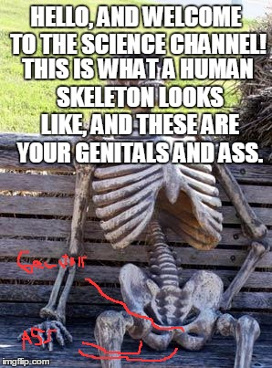 Waiting Skeleton Meme | HELLO, AND WELCOME TO THE SCIENCE CHANNEL! THIS IS WHAT A HUMAN SKELETON LOOKS LIKE, AND THESE ARE YOUR GENITALS AND ASS. | made w/ Imgflip meme maker
