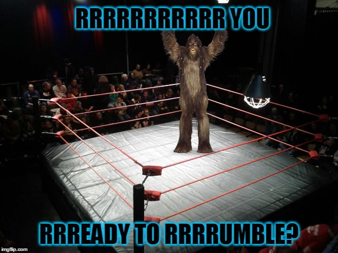 RRRRRRRRRRR YOU RRREADY TO RRRRUMBLE? | made w/ Imgflip meme maker
