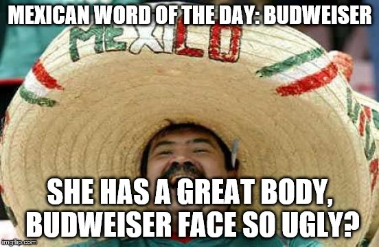 Happy Mexican | MEXICAN WORD OF THE DAY: BUDWEISER SHE HAS A GREAT BODY, BUDWEISER FACE SO UGLY? | image tagged in happy mexican | made w/ Imgflip meme maker