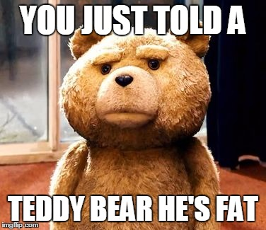 TED Meme |  YOU JUST TOLD A; TEDDY BEAR HE'S FAT | image tagged in memes,ted | made w/ Imgflip meme maker
