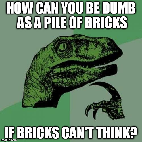dumb as a pile of bricks | HOW CAN YOU BE DUMB AS A PILE OF BRICKS IF BRICKS CAN'T THINK? | image tagged in memes,philosoraptor,pile of bricks | made w/ Imgflip meme maker