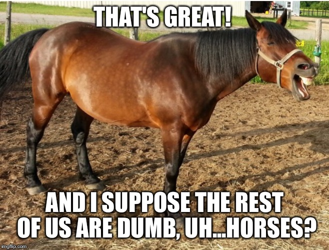 LAUGHING HORSE | THAT'S GREAT! AND I SUPPOSE THE REST OF US ARE DUMB, UH...HORSES? | image tagged in laughing horse | made w/ Imgflip meme maker