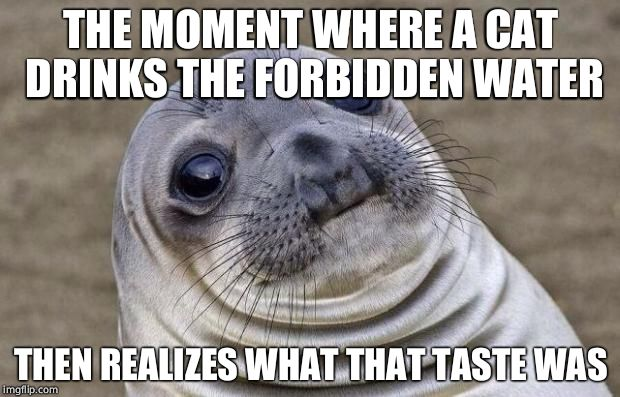 Awkward Moment Sealion Meme | THE MOMENT WHERE A CAT DRINKS THE FORBIDDEN WATER THEN REALIZES WHAT THAT TASTE WAS | image tagged in memes,awkward moment sealion | made w/ Imgflip meme maker