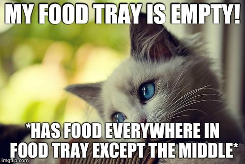 First World Problems Cat |  MY FOOD TRAY IS EMPTY! *HAS FOOD EVERYWHERE IN FOOD TRAY EXCEPT THE MIDDLE* | image tagged in memes,first world problems cat | made w/ Imgflip meme maker