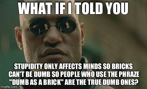 "Matrix Morpheus Meme | WHAT IF I TOLD YOU STUPIDITY ONLY AFFECTS MINDS SO BRICKS CAN'T BE DUMB SO PEOPLE WHO USE THE PHRAZE ""DUMB AS A BRICK"" ARE THE TRUE DUMB ONE 