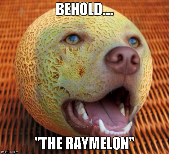 "BEHOLD.... ""THE RAYMELON"" 