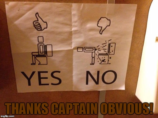 How To Poop | THANKS CAPTAIN OBVIOUS! | image tagged in how to | made w/ Imgflip meme maker