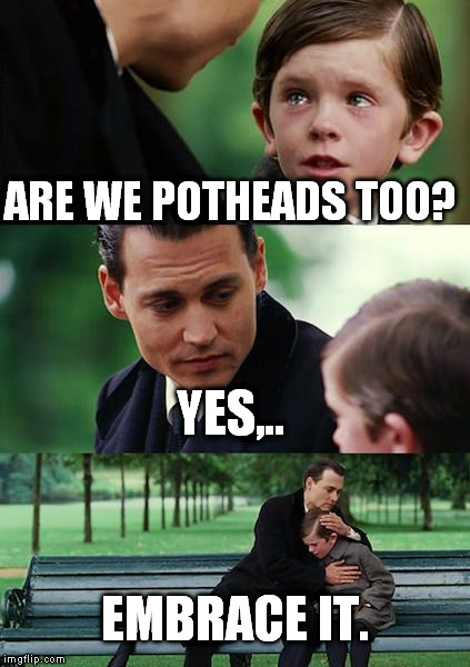 Finding Neverland Meme | ARE WE POTHEADS TOO? YES,.. EMBRACE IT. | image tagged in memes,finding neverland | made w/ Imgflip meme maker