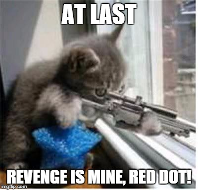 Sniper cat | AT LAST REVENGE IS MINE, RED DOT! | image tagged in sniper cat,red dot,cats,memes,funny,revenge | made w/ Imgflip meme maker