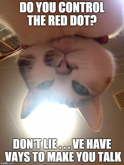 Cats are figuring out who's operating the laser pointer... | DO YOU CONTROL THE RED DOT? DON'T LIE . . . VE HAVE VAYS TO MAKE YOU TALK | image tagged in catsnap1,red dot,cat,laser,operator | made w/ Imgflip meme maker