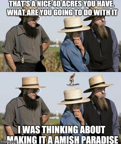 Gangsters plotting | THAT'S A NICE 40 ACRES YOU HAVE. WHAT ARE YOU GOING TO DO WITH IT I WAS THINKING ABOUT MAKING IT A AMISH PARADISE | image tagged in amish idea,weird al yankovic,gangsters,memes,funny | made w/ Imgflip meme maker