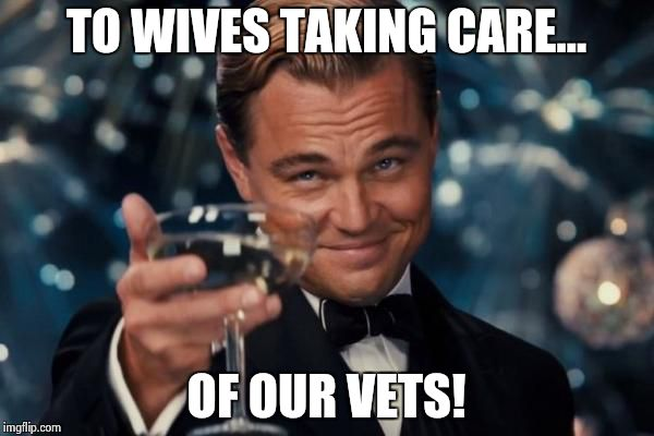Leonardo Dicaprio Cheers Meme | TO WIVES TAKING CARE... OF OUR VETS! | image tagged in memes,leonardo dicaprio cheers | made w/ Imgflip meme maker