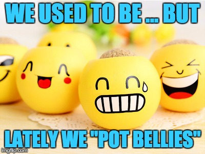 "WE USED TO BE ... BUT LATELY WE ""POT BELLIES"" 