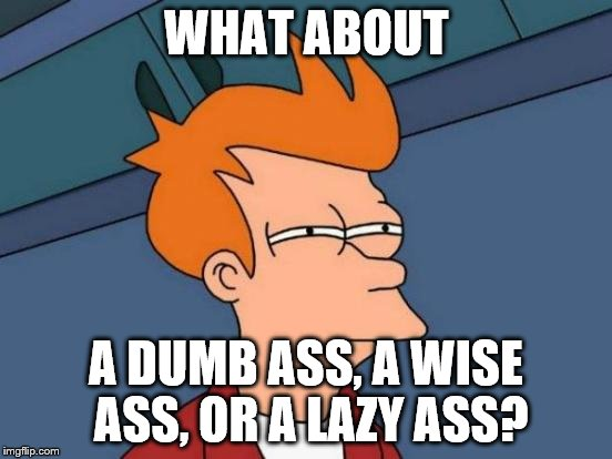 Futurama Fry Meme | WHAT ABOUT A DUMB ASS, A WISE ASS, OR A LAZY ASS? | image tagged in memes,futurama fry | made w/ Imgflip meme maker