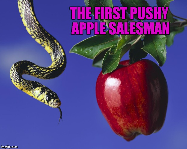THE FIRST PUSHY APPLE SALESMAN | made w/ Imgflip meme maker