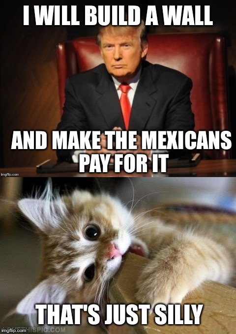 My first use of the amazing That's Just Silly Cat! (Kudos to Jying for making the cat template) | image tagged in memes,that's just silly,donald trump | made w/ Imgflip meme maker