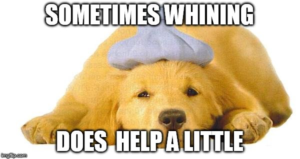 SOMETIMES WHINING DOES  HELP A LITTLE | made w/ Imgflip meme maker